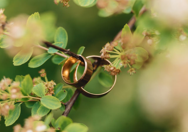 wedding rings wedding celebrations accessories decorations